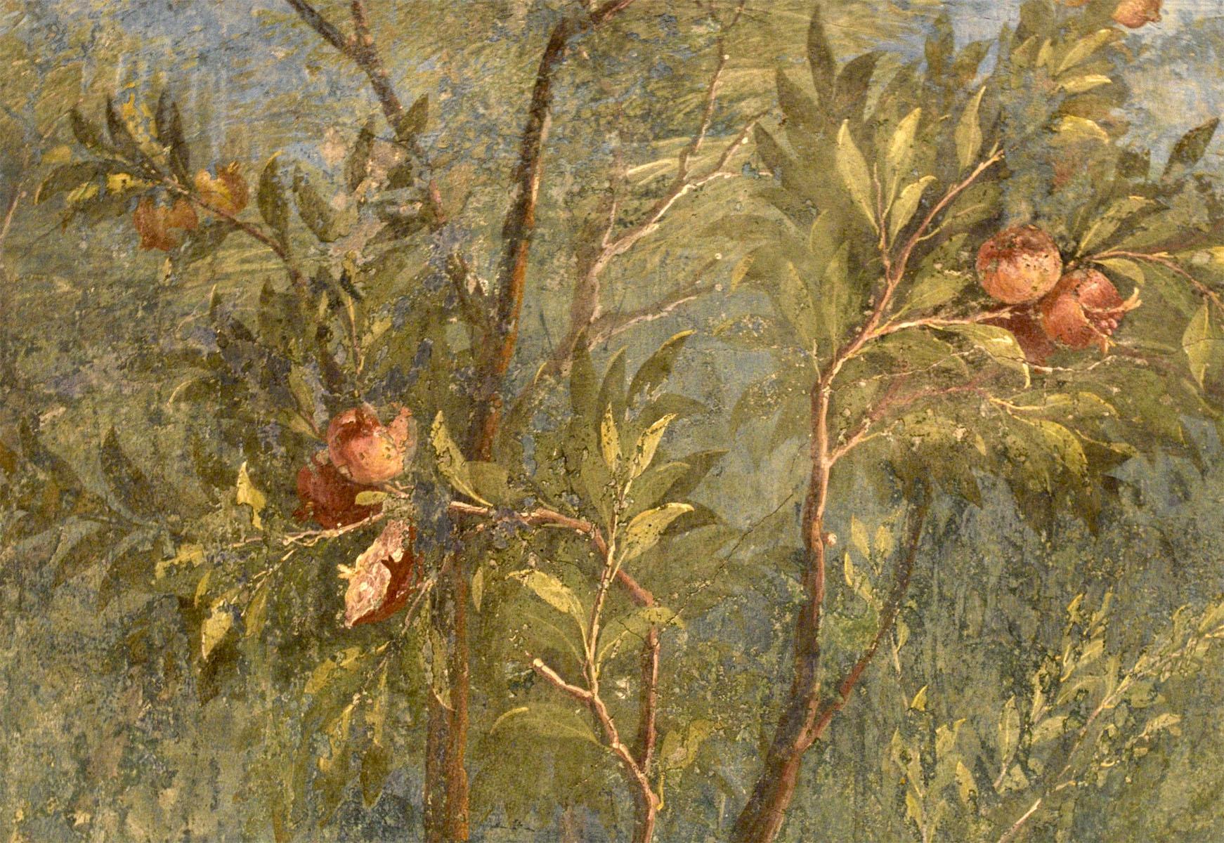 Настенная фреска из дома Ливии