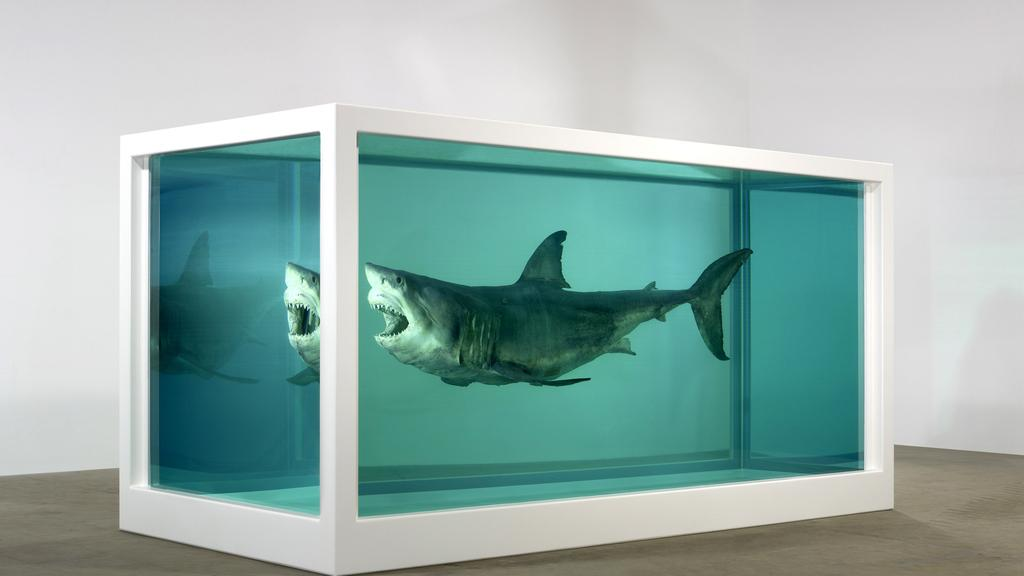 Дэмьен Хёрст / «Физическая невозможность смерти в сознании кого-то живущего», (тигровая акула в аквариуме с формалином) / 1991