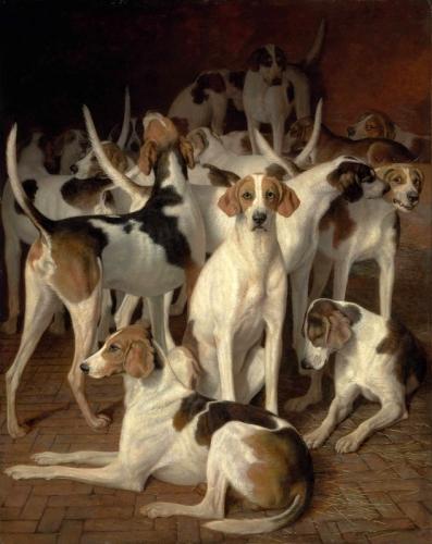 художник / Лоран АГАС (1767-1849) / «Гончие собаки в питомнике»