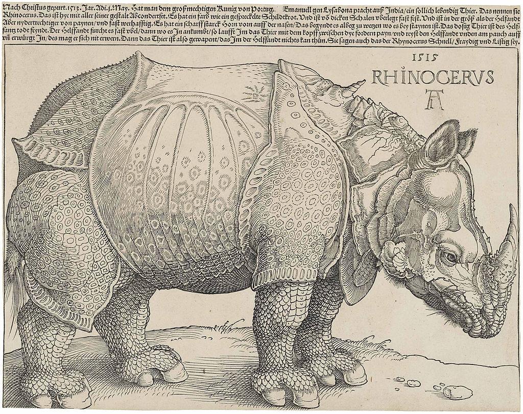 Альбрехт Дюрер / «Носорог» / 1515