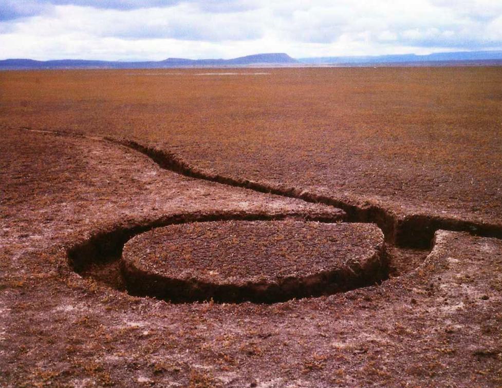 Майкл Хейзер / «Isolated Mass / Circumflex (Number 2)» / 1968-78